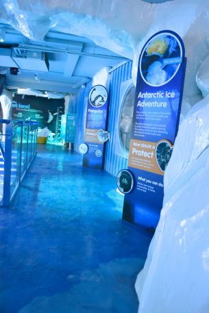 Birmingham Ice Adventure Dry side theming