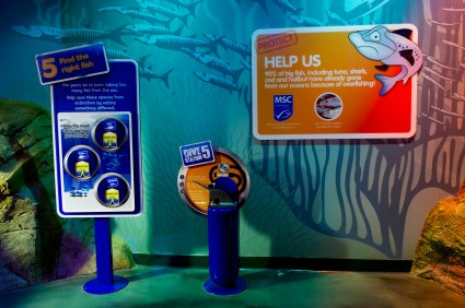 Sea Life ManchesSea Life Dive Trail Interactives International Roll-outter
