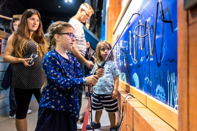 Conservation Cove opens at Brighton Sea Life Centre photo ©Julia Claxton- graphics fifty50