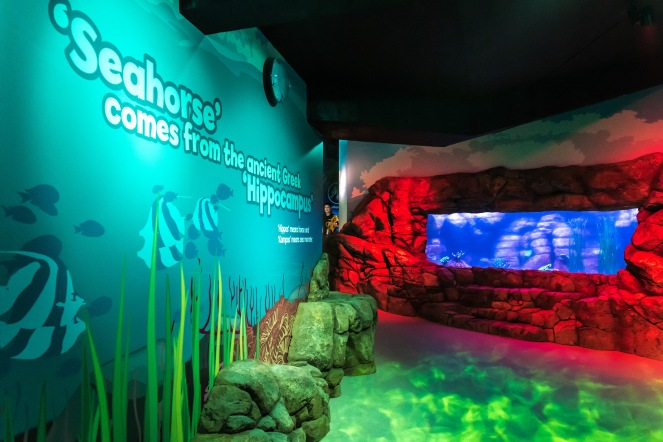 Secrets of the Reef launch at SEALIFE Brighton. photo ©Julia Claxton