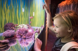 Tallulah Cunliffe at Secrets of the Reef launch at SEALIFE Brighton. photo ©Julia Claxton